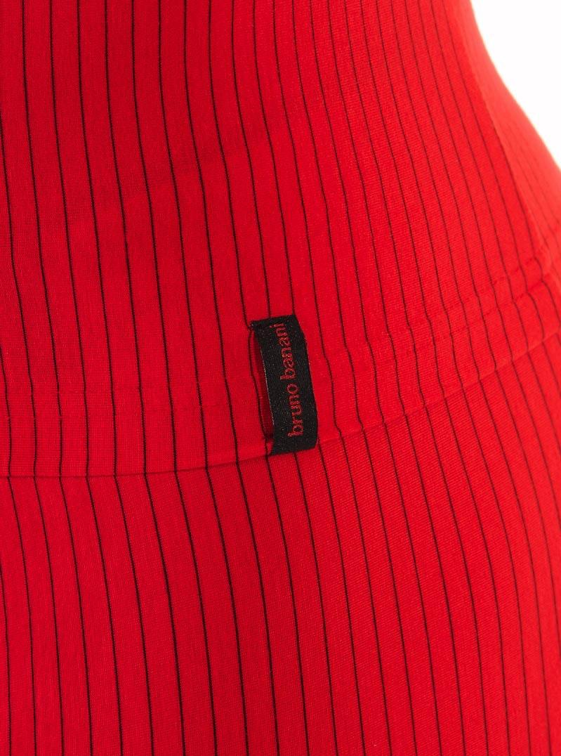 Bruno Banani Straight Line V-Shirt 2205